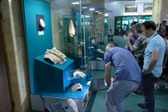 10_muzeum
